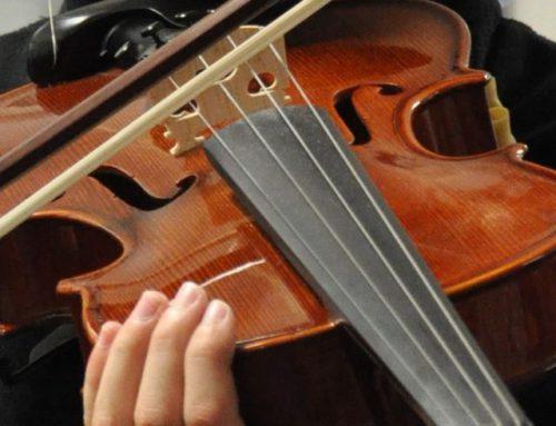 Unser Dozententeam für Streichinstrumente